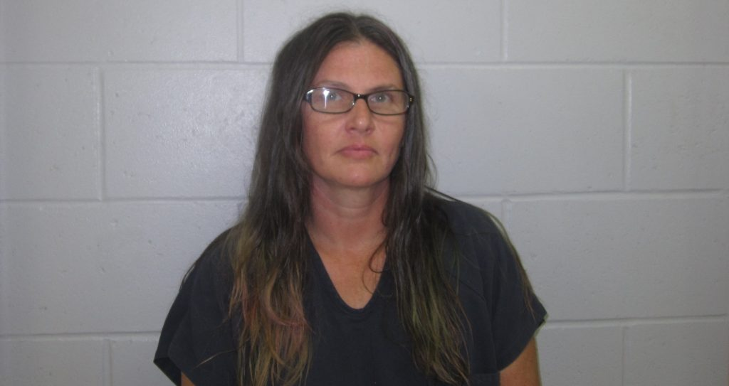 TWO WOMEN ARRESTED FOLLOWING MARTIN COUNTY THEFT - 18 WJTS
